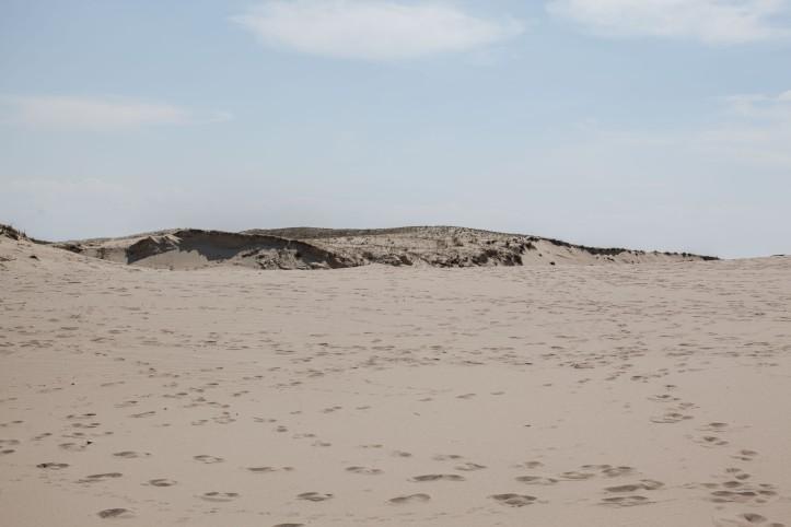 2017-05-14, Sanddynerna, sand, fotspår, Foto: Karl Larsson
