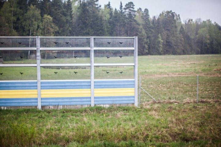 2017-05-15, Skyddsvall, staket, träd, gräs, Plexiglas, Foto: Karl Larsson